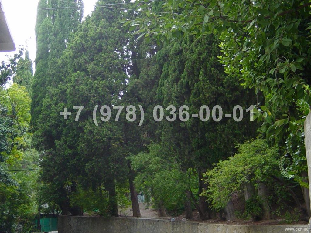 №1677 дом 40 м<sup>2</sup>, ул. Садовая