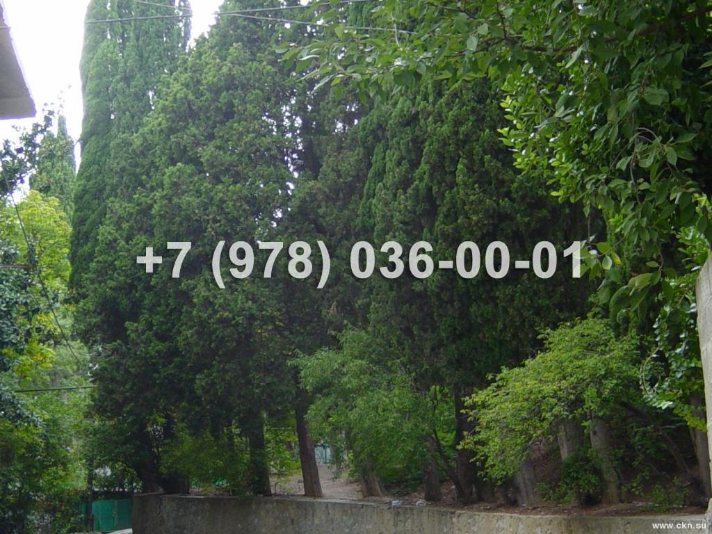 №1722 5 соток<br /> Ялта